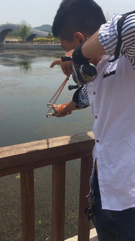 户外打鱼,鱼鳔捕捉。视频直播视频_户外捕捉嫁接全集核桃图片