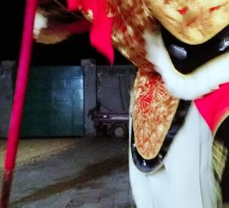 【视频棍舞】视频直播-YY圈圈妖猴教程包钩法图片